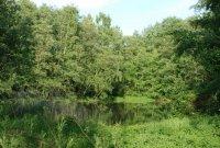 Přírodní rezervace Vidnavské mokřiny