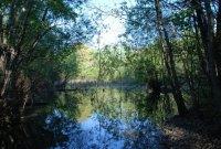 Přírodní památka Malé laguny