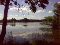 Pohled na rybník Lhotka