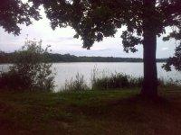 Pohled na Zlivský rybník
