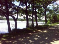 Hráz rybníka Nuzov nedaleko obce Dubné