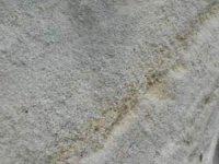 Detail pískovce