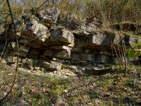 Bašské vrstvy vNajvarově kamenárce