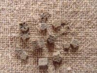 Zkameněliny zplaňavských vrstev– články lilijiců Pentacrinus