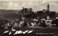Pastva husí na Skalečce