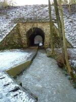 Potok vOparenském údolí