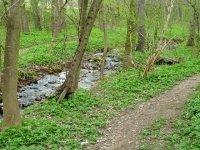 Pokratický potok