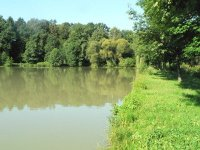 Sudrův rybník