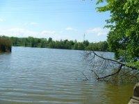 Nový rybník 2