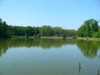Rybník Hvozdnice