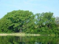 Jankův rybník