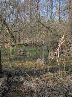 Heraltický potok