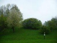 Věřňovice